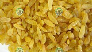 فروش کشمش طلایی صادراتی